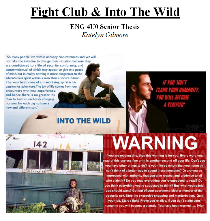 Essay on chris mccandless in into the wild